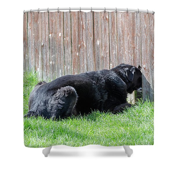 Greener Grass Shower Curtain