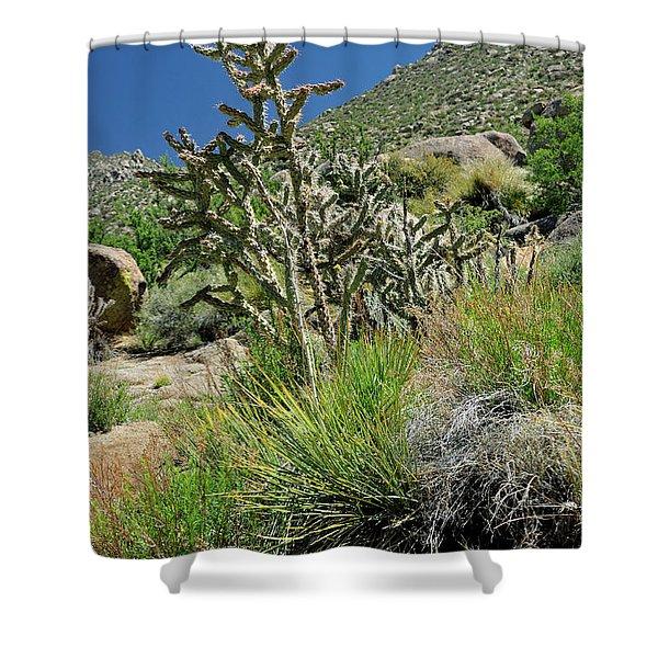Greening Of The High Desert Shower Curtain