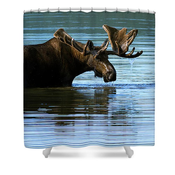 Greeting Shower Curtain