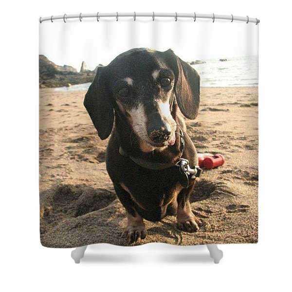 Sandy Snuffler Shower Curtain