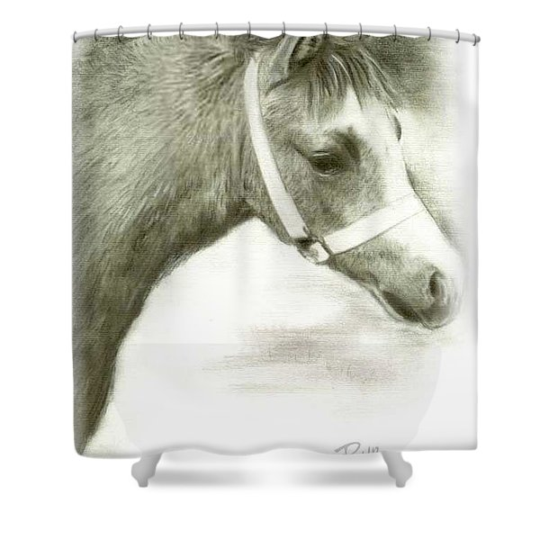 Grey Welsh Pony  Shower Curtain