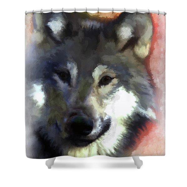 Grey Wolf Shower Curtain