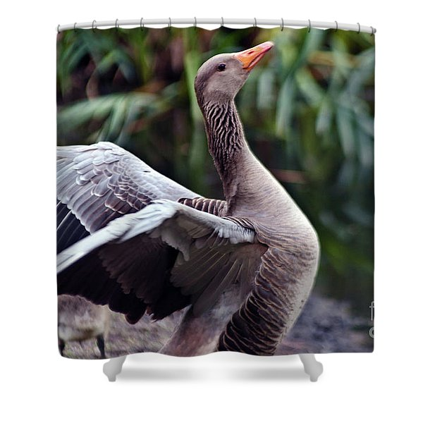 Shower Curtain featuring the photograph Greylag Goose Poetry by Silva Wischeropp