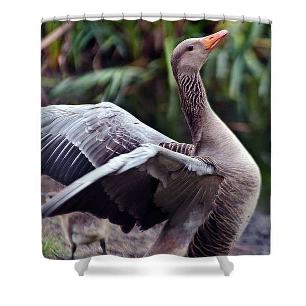 Greylag Goose Poetry Shower Curtain