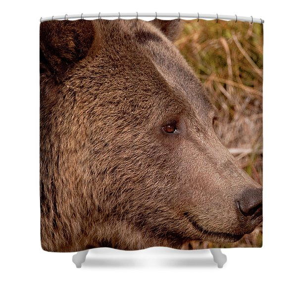 Grizzly Profile Shower Curtain