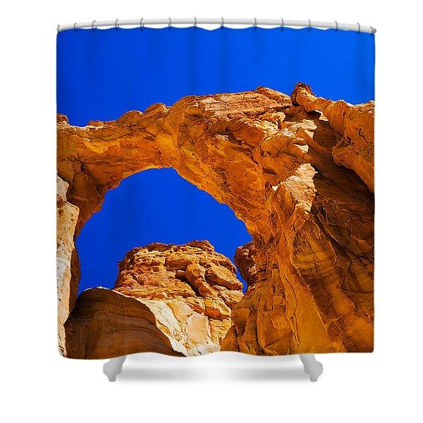 Grosvenor Arch Shower Curtain
