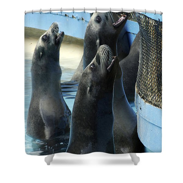 Group Lunch Shower Curtain
