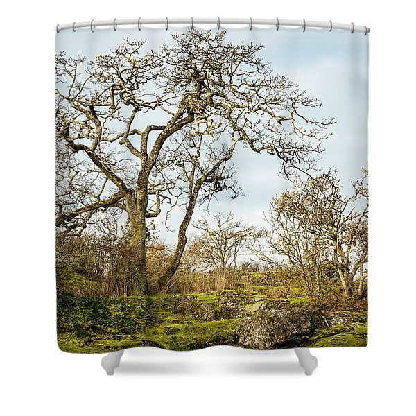 Growing Among The Rocks 1 Shower Curtain