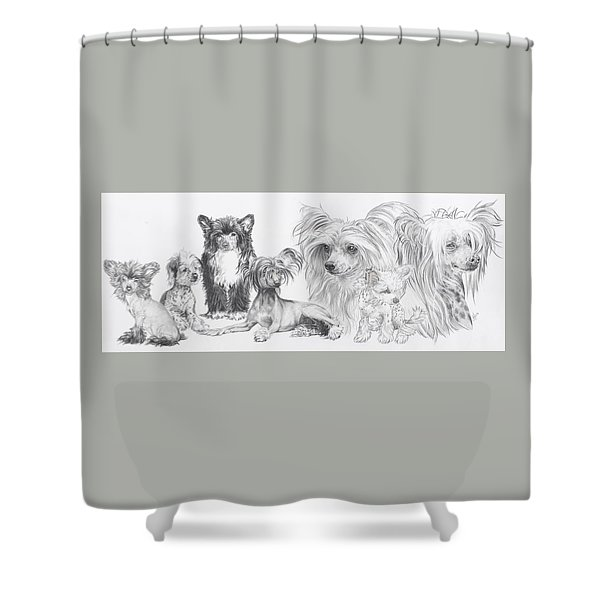 Shower Curtain featuring the drawing The Chinese Crested And Powderpuff by Barbara Keith