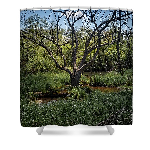 Growning From The Marsh Shower Curtain