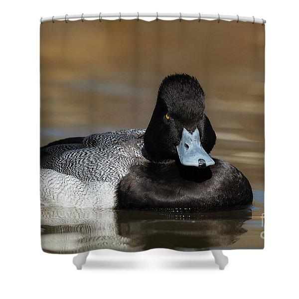 Grumpy Duck Shower Curtain