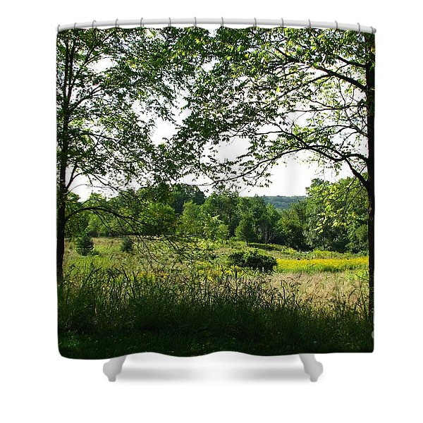 Beyound The Trees Shower Curtain