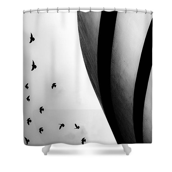 Guggenheim Museum With Pigeons Shower Curtain