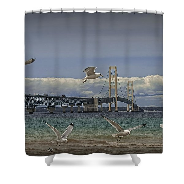 Gulls Flying By The Bridge At The Straits Of Mackinac Shower Curtain