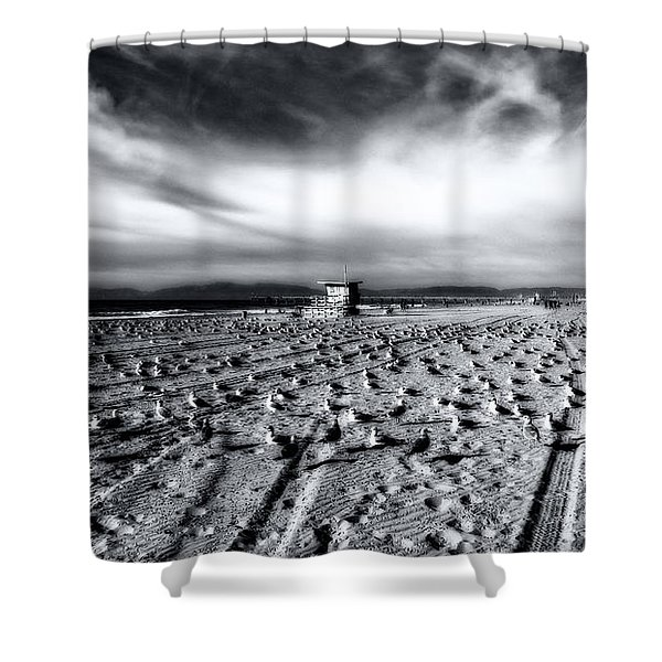 Gulls On Beach Shower Curtain