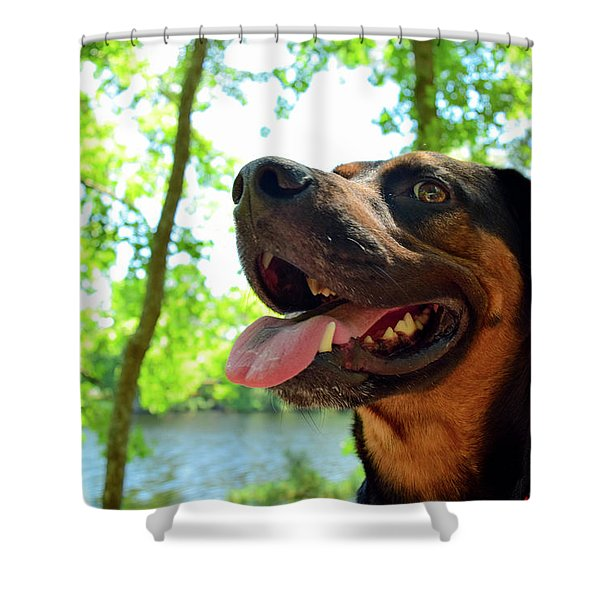 Gus On A Hike Shower Curtain