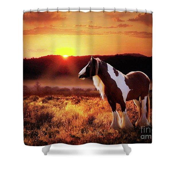 Shower Curtain featuring the digital art Gypsy Sunset by Melinda Hughes-Berland