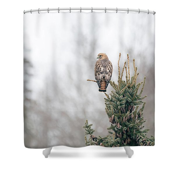 Hal Hanging Out Shower Curtain