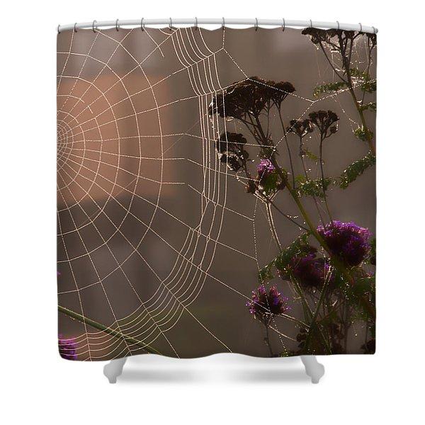 Half A Web Shower Curtain