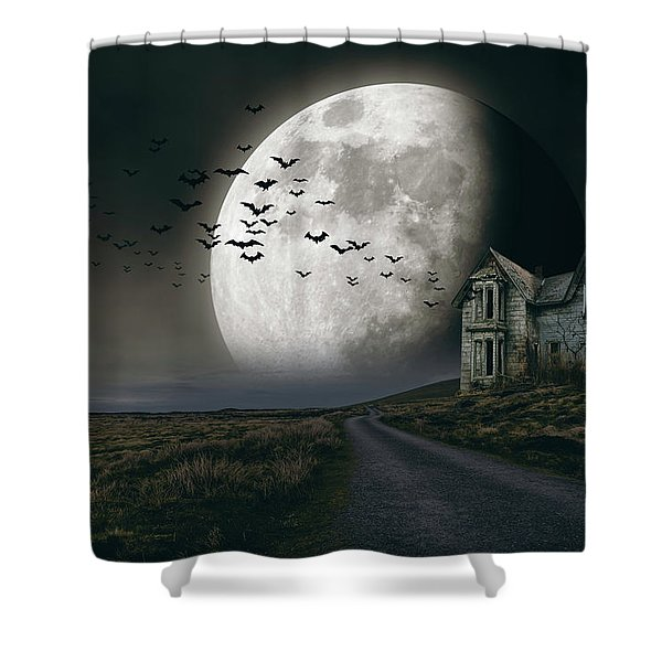 Halloween Witch House 3 Shower Curtain