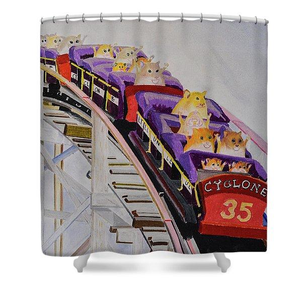 Hamster On Roller Coaster Shower Curtain