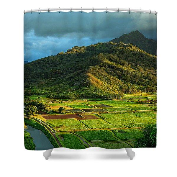 Hanalei Valley Taro Fields Shower Curtain