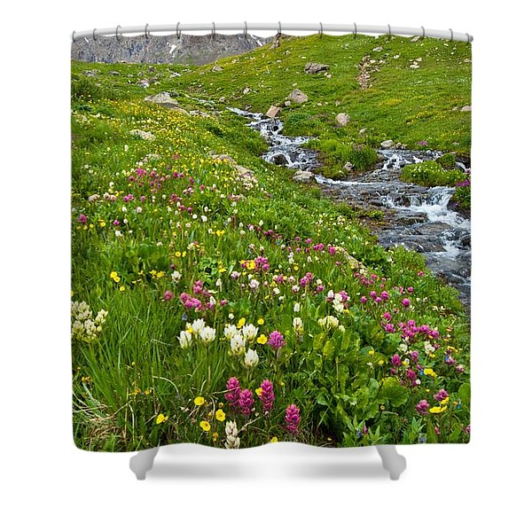 Handie's Peak And Alpine Meadow Shower Curtain