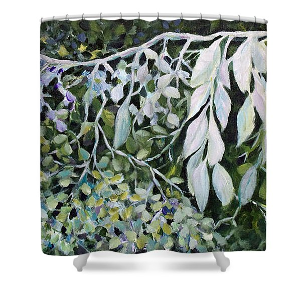 Silver Spendor Shower Curtain