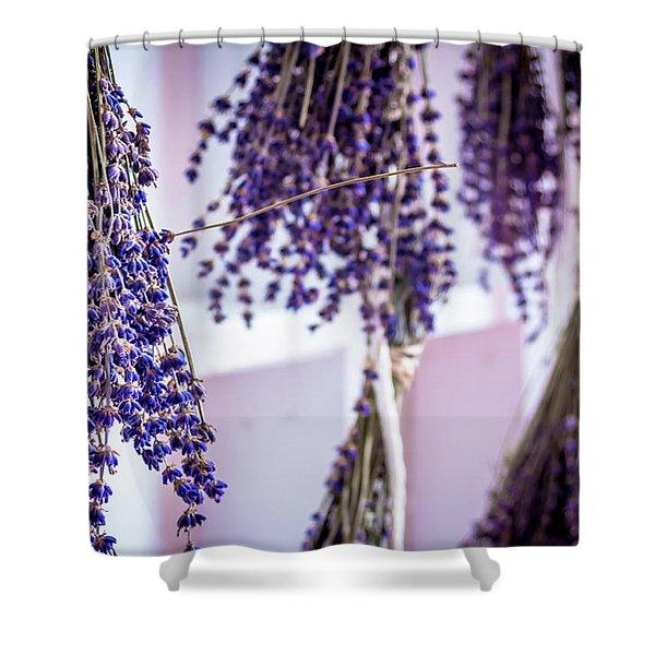 Hanging Lavender Shower Curtain