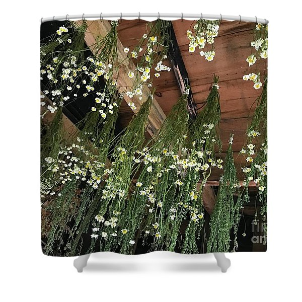 Hanging Upside Down Shower Curtain