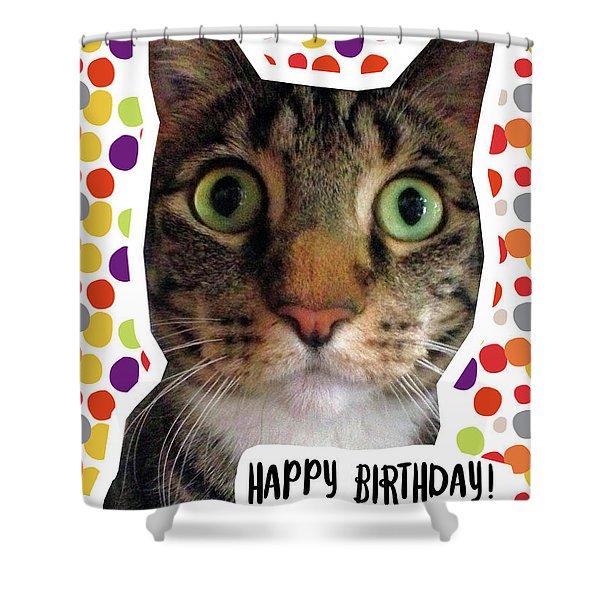 Happy Birthday Cat- Art By Linda Woods Shower Curtain