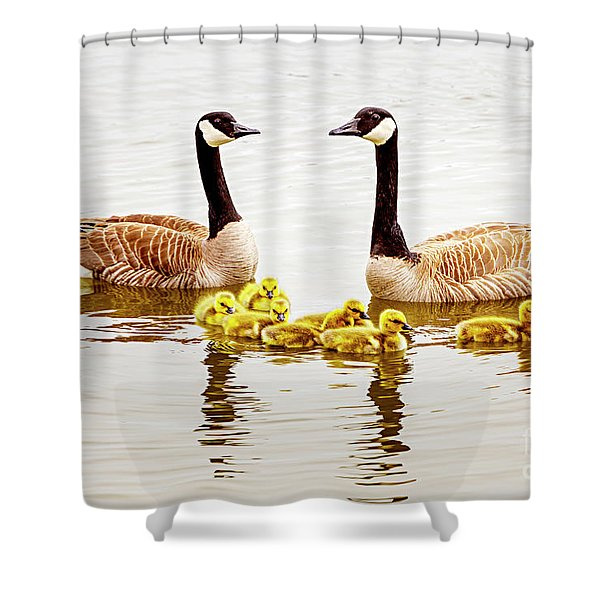 Shower Curtain featuring the photograph Happy Family by David Millenheft