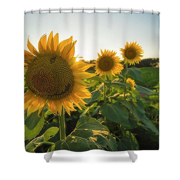 Happy Sunflower Shower Curtain