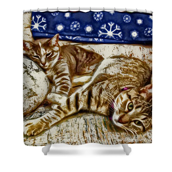 Happy Together Shower Curtain by David G Paul