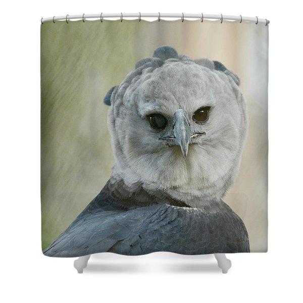 Harpy Shower Curtain
