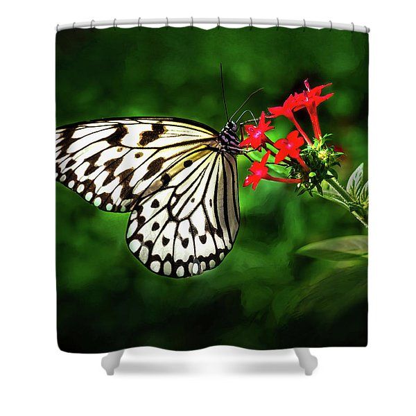 Haven't You Noticed The Butterflies? Shower Curtain