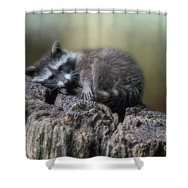 Having A Rest Shower Curtain