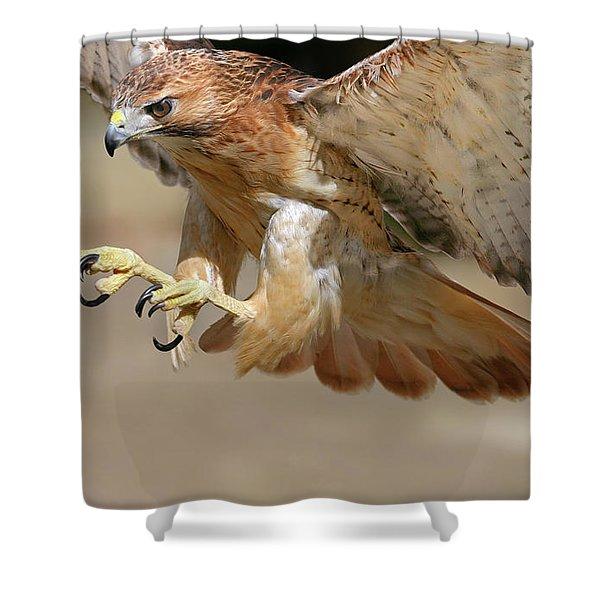 Hawk Attack Shower Curtain