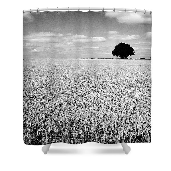 Hawksmoor Shower Curtain