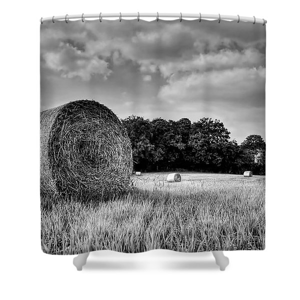 Hay Race Track Shower Curtain