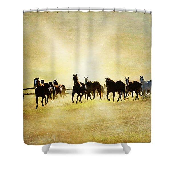 Headed Home Ll Shower Curtain