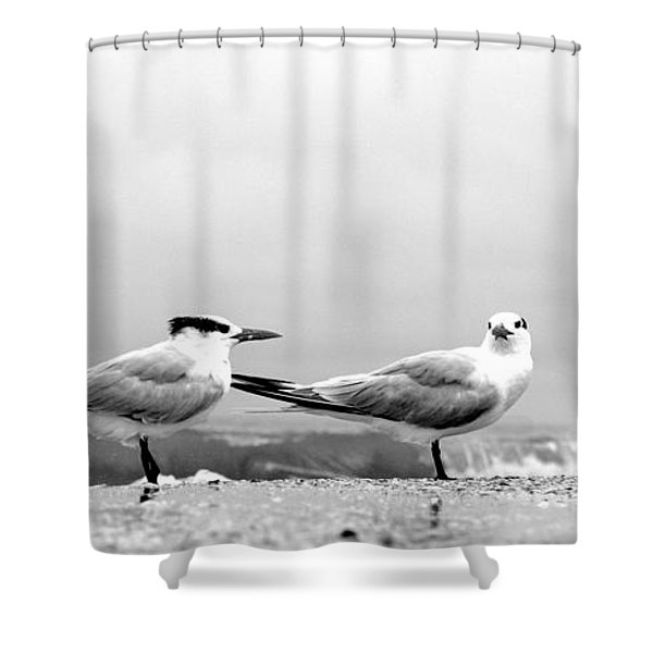 Heads Turned Shower Curtain