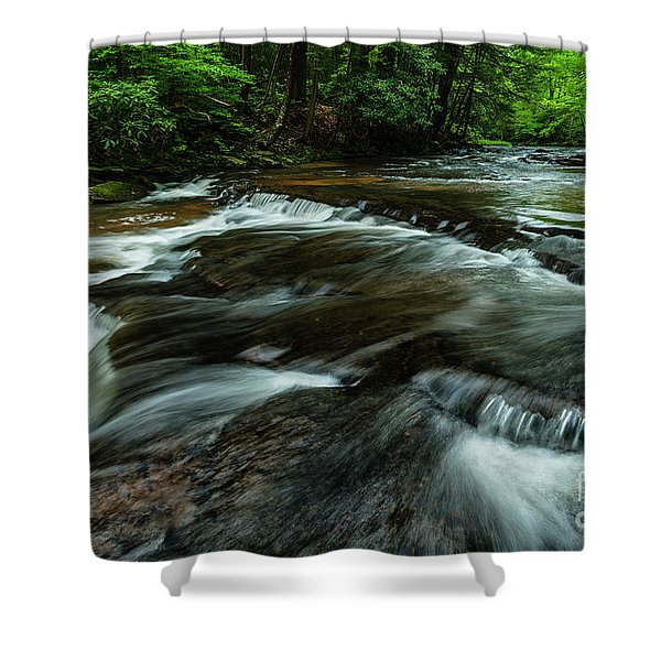 Headwaters Of Williams River  Shower Curtain