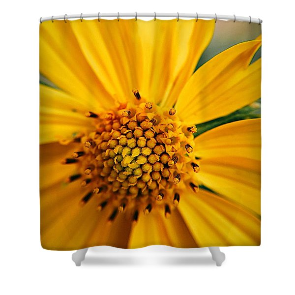Heart And Soul Shower Curtain