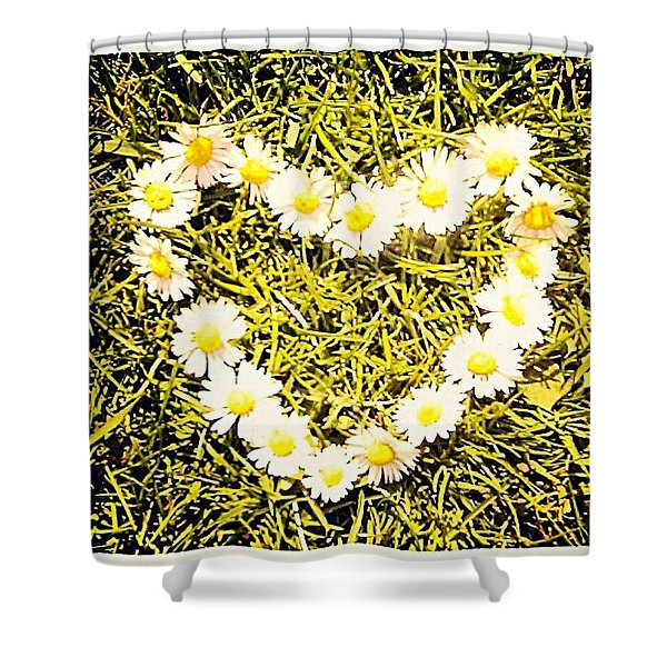 Heart Of Daisies Shower Curtain