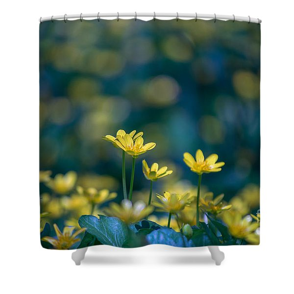 Heart Of Small Things Shower Curtain
