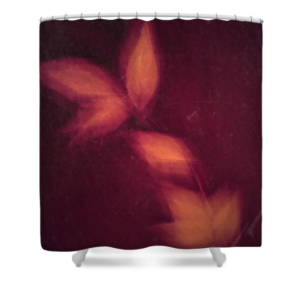 Heated Shower Curtain