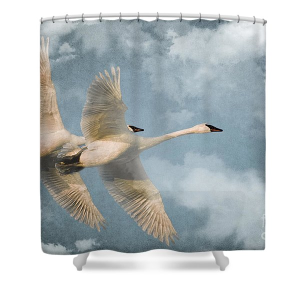 Heavenly Flight Shower Curtain