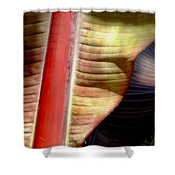 Heliconia Waves Shower Curtain