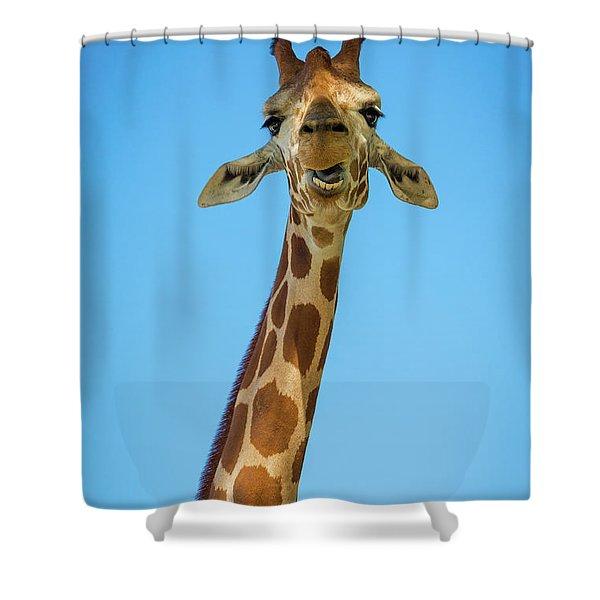 Hello Giraffe Shower Curtain